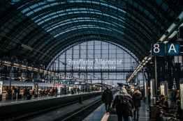 Photo by Sascha Hormel on Pexels.com